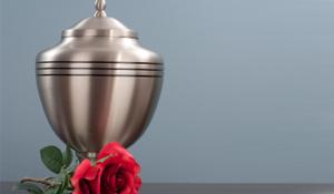 crematie alkmaar